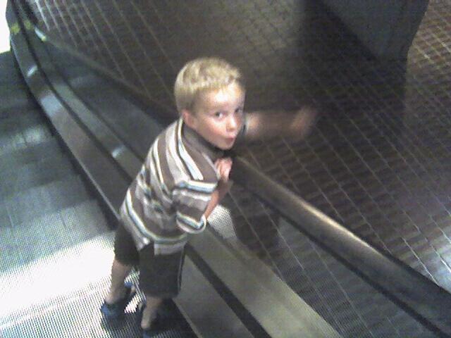 Westin Elevator